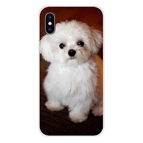 XMCJ Carcasa transparente de TPU para Apple iPhone X XR XS 11Pro MAX 4S 5C SE 6S 7 8 Plus iPod 5 6 White Maltese Cachorros Perros (color: imágenes 4, material: para iPhone XR)