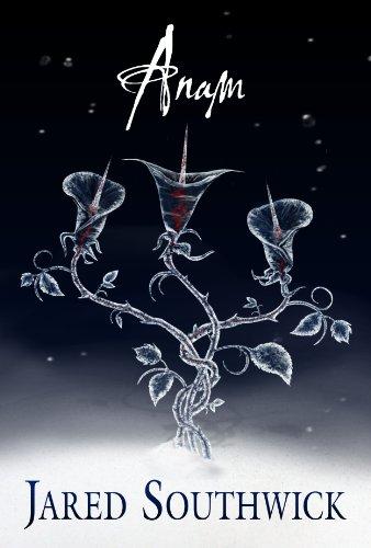 Anam (Marysvale Trilogy Book 3) (English Edition)