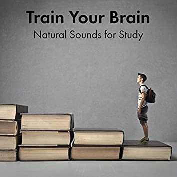 Train Your Brain (Natural Sounds for Study) – Music for Intellectual Stimulation, Reading Comprehension, Smart & Brilliant, Books and Papers