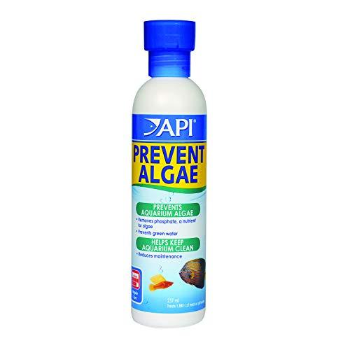API Prevent Algae Aquarium Algae Control Solution, 237 ml Bottl
