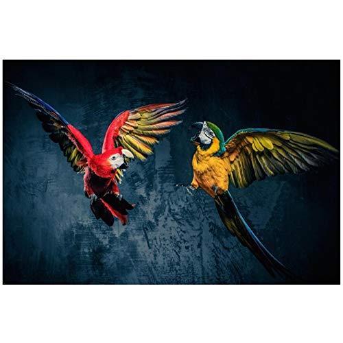 Unbekannt leinwand ölgemälde Wand Schöne papagei Poster und drucke wandkunst Tier Kunst Bilder für Wohnzimmer dekor 50x120 cm (19,7
