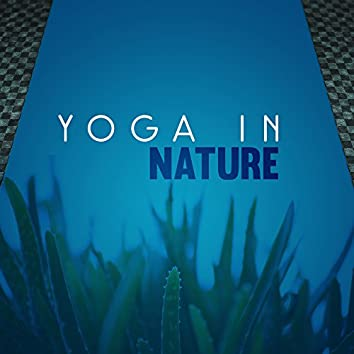 Yoga in Nature – Healing Yoga Music, Best for Meditation, Mantra, Mindfulness, Kindness Affirmation