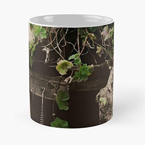 Plant Rustic Sepia Metal Taza de café con Leche 11 oz