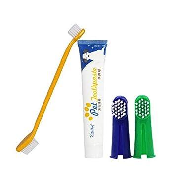 Chiens Chats Dentifrice Brosse À Dents Ensembles Animaux Soins des Dents en Santé Sets Nettoyage Soins pour Animaux Bucco-Dentaire Brosse À Dents Kit 1régler