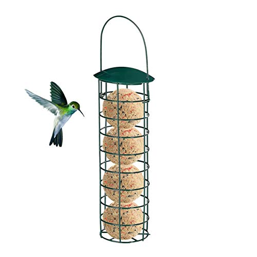 Nikula Dumpling Grease Ball Holder Birds Hanging House Garden Tree Container Iron Grease Ball Holder For Tit Small Wild Birds Dark Green Grease Ball gorgeously