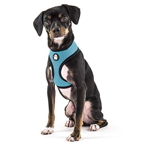 Furhaven Pet Dog Collar - Adjustable Padded Lightweight Breathable Mesh Pet Harness Dog Walking Vest for Dogs and Cats, Lagoon Blue, Small