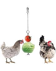 Chicken Parrot Bird Hanging Feeder – Pollo, verduras, pincho para fruta, pollo, acero inoxidable, juguete para buscar comida