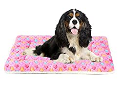 Small dog lying on a pink fleece soft bed mat.