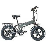 RX20 750W Bicicleta eléctrica Plegable 20 * 4.0 Bicicleta de montaña con neumáticos Gruesos 48V E-Bike Suspensión Completa (Grey, 15Ah)