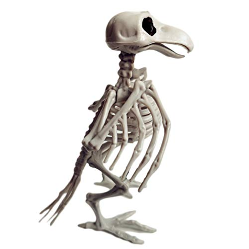 Bogeger Tierskelett Knochen, Horror realistische Simulation Skelett für Halloween Party Dekoration,Raben-Skelett