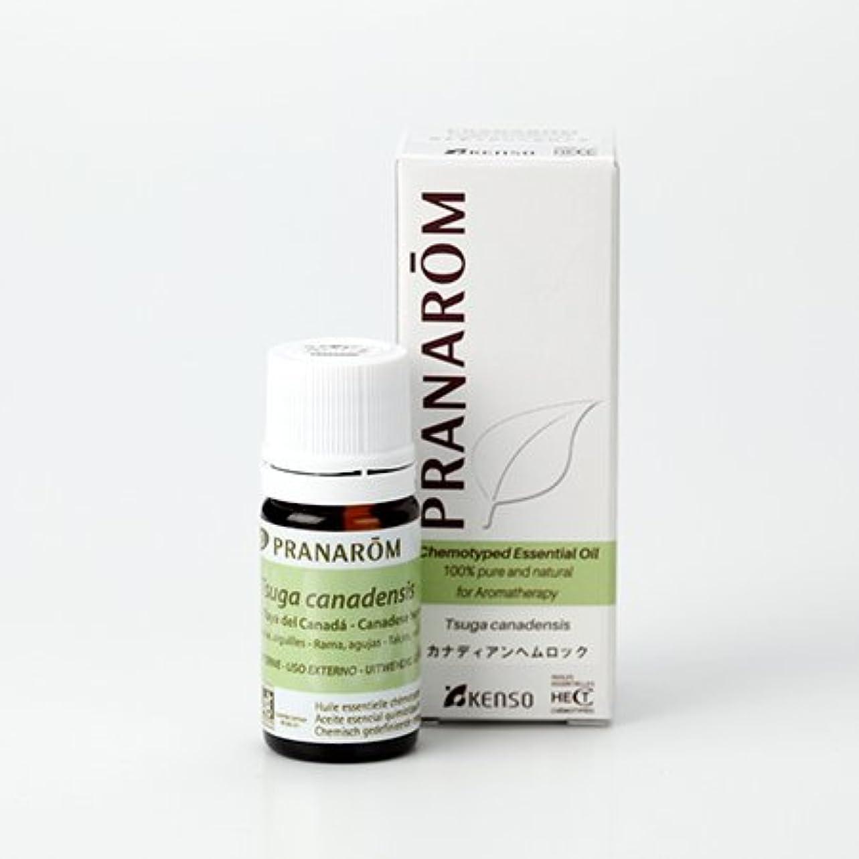 役立つ中毒アシュリータファーマンプラナロム カナディアン ヘムロック 5ml (PRANAROM)