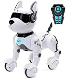 Top Race Remote Control Robot Dog Toy for Kids, Interactive & Smart Dancing to...
