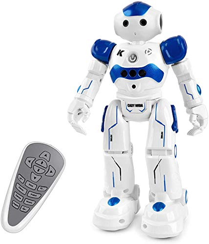 FLYWIND Smart RC Robot Toy for Kids, Gesture Sensing Dancing Robot for Boys...
