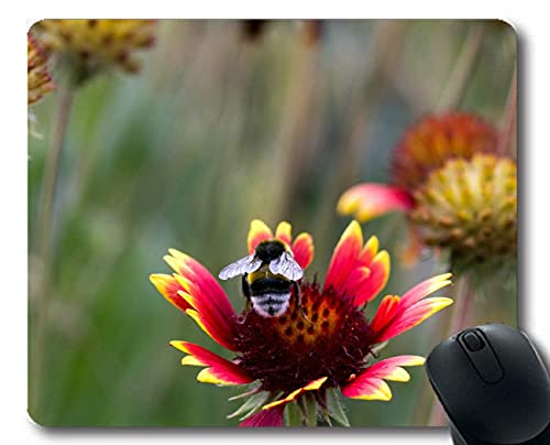 Funny Customized Bee Bumble Bee Polen Tree Peony Nectar Computer Gaming Mouse Pad Laptop Pad Non-Slip Rubber Stitched Edges 9.8X 11.8 Inch