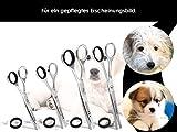 Fellschere Gerade Gebogen Hunde-Haarschere Hundescheren-Set 4-Teilig - 5