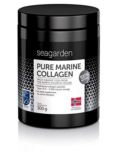 Polvo de colágeno marino puro noruego | Péptidos hidrolizados | de bacalao noruego, ártico y salvaje | Suplemento para la piel, cabello, uñas, tendones, ligamentos | 100{d5f2837f2be211ef04467e1ad924b5d5a3215e500a797674c3ecb596a88ce4a2} natural | 300 g