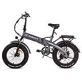 Fafrees Bicicletta Elettrica Pieghevole 500W Fat Tire 20