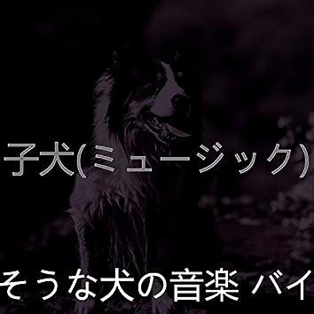 子犬(ミュージック)