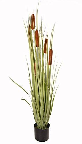 SPORT-LINE Planta Artificial de 120 cm, Hierba Decorativa, Planta Artificial, Maceta de Hierba Cattail 120 cm - II