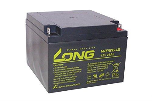 Akku kompatibel Alarmanlage Satel Integra 128 AGM Blei VDS