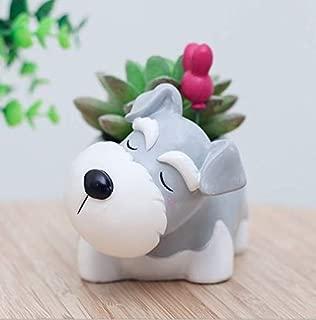 Schnauzer Dog Succulent Planter Pots for Office House Balcony Landscape Creative Decorative Flower Pots (Schnauzer)