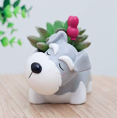 Schnauzer Dog Succulent Planter Pots for Office House Balcony Landscape Creative Decorative Flower Pots