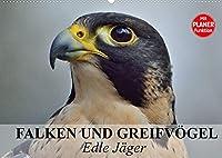 Falken und Greifvoegel - Edle Jaeger (Wandkalender 2022 DIN A2 quer): Blitzschnelle und edle Jaeger auch im Dienste der Menschen (Geburtstagskalender, 14 Seiten )