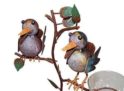Amicaso Regenmesser Niederschlagsmesser Wetterstation Vogelpaar Spatzenpaar Gartendeko Metalldeko Echtglas