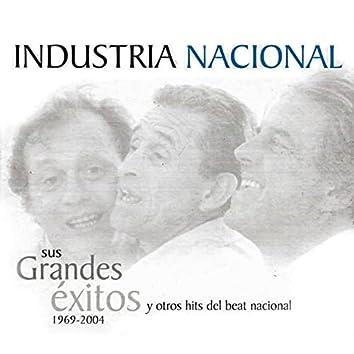 Sus Grandes Éxitos y Otros Hits del Beat Nacional 1969 - 2004