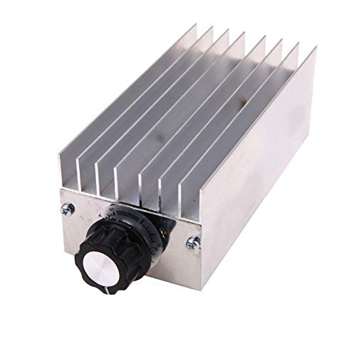Rabusion Practical For AC 220V 6000W SCR Voltage Regulator Motor Speed Controller Dimmer Thermostat