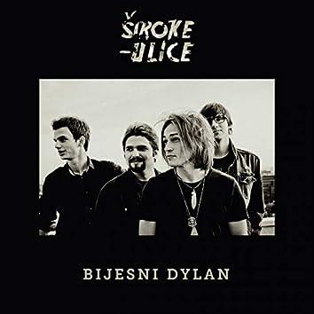 Bijesni Dylan