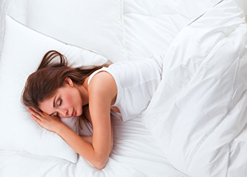 Continental Bedding Premium 100% White Goose Down Soft Pillow. Standard Size [Soft]