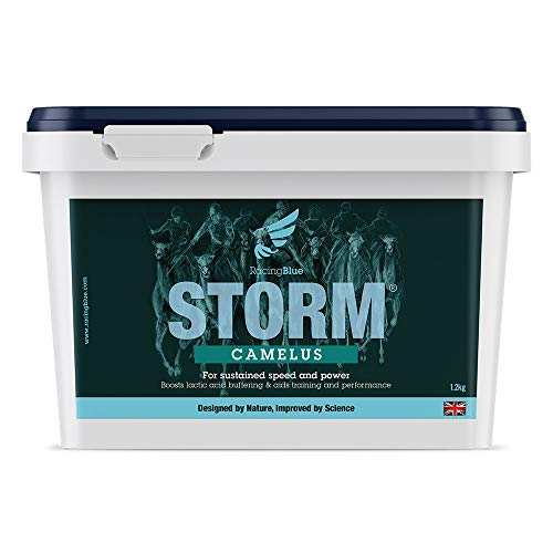 STORM Camelus (For Training & Performance in Racing Camels) 1.2kg