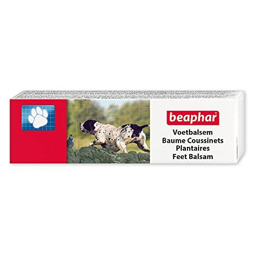 BEAPHAR – Baume coussinets pour chien – À l'huile d'arbre à Thé, Glycérine & Cire d'abeille – Adoucit les coussinets/museau & lutte contre les crevasses – Protège du froid/chaleur/irritations – 40 ml