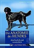Die Anatomie des Hundes: Anschaulich und verständlich: Einfach und verständlich (Cadmos Hundebuch)