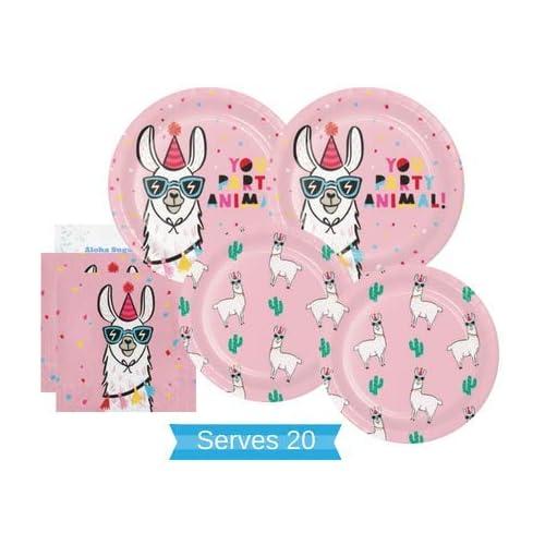 38f04de7c7042 Llama Party Decorations: Amazon.com