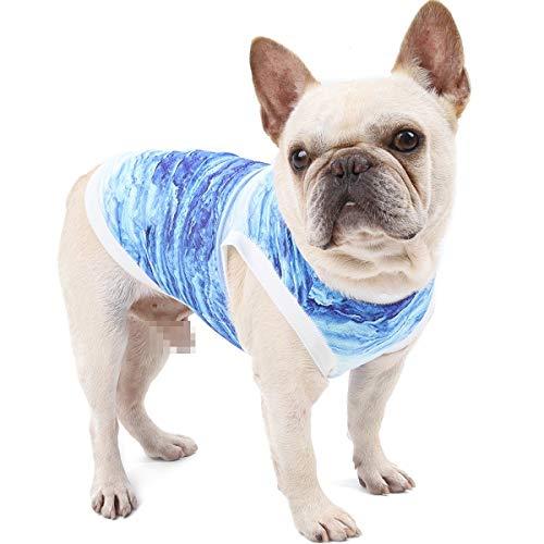 Yiwong Maglietta con Gilet per Cani, Raffreddare Immediatamente I Vestiti per Animali Domestici, Gilet Rinfrescante Estivo per Cani e Gatti