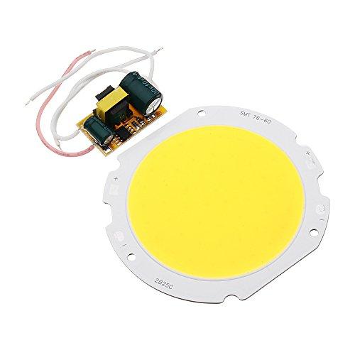 DADEQISH AC90-240V 20W DIY LED Chip Runde Platine Panel Bead mit LED Netzteil Treiber Transformator Innenlicht (Color : Warm White)