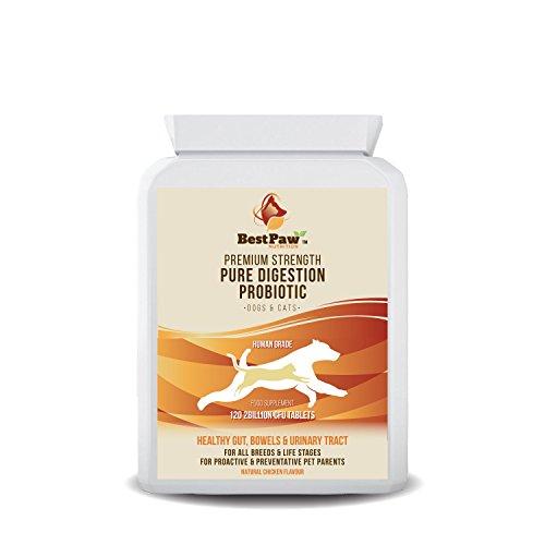 Best Paw Nutrition - Integratore probiotico per Cani e Gatti - Supplemento Probiotico per Lo Stomaco Sensibile dei Cani - È Anche Un Integratore per Il Sistema Immunitario