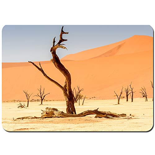 Lichenran Antideslizante Alfombra De Baño,Acacia Muerta erioloba Valle vlei Namibia,Alfombra de Cocina Alfombra Mascota,Alfombras de Ducha 75x45cm