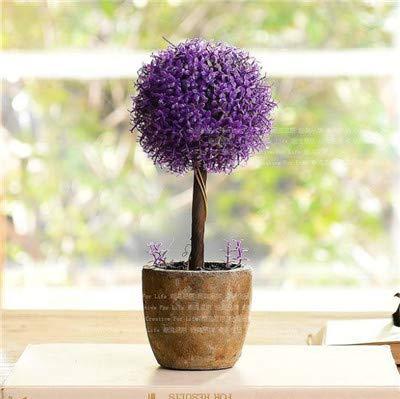 Bloom Green Co. 100 Stück Lavendel Bonsai Kraut Bonsai-Garten Balkon Topf Vier Jahreszeiten Blume Bonsai für Zimmerpflanzen Weihnachtsgeschenk: 14