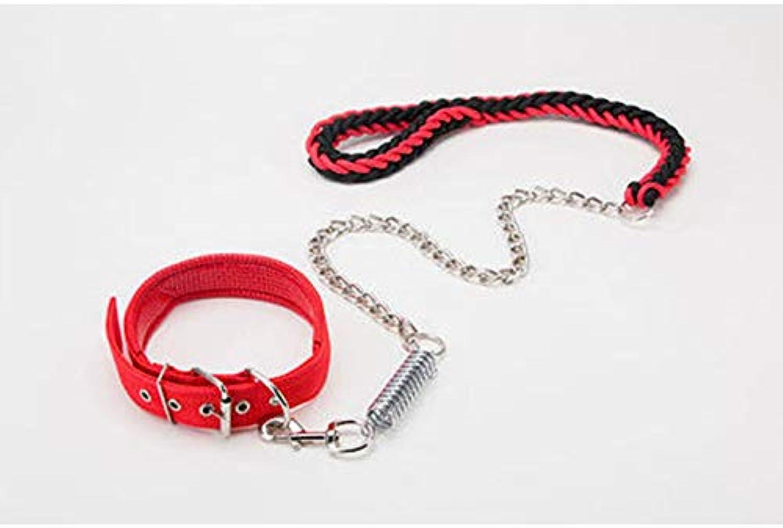 Bxfdc Dog Leash, Dog Chain Spring Buffer ExplosionProof, Large Dog Medium Dog, Dog Leash, Dog Supplies