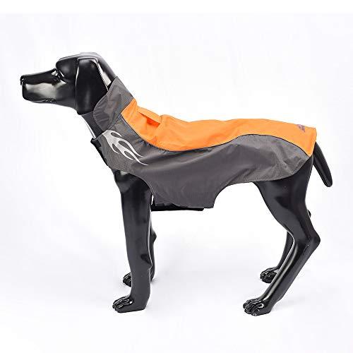 BLACKDOGGY Warme Outfit Kleidung für kleine, mittelgroße Hunde Wasserdicht Winddicht Winter Outdoor Sport Haustier Hund Jacken Mäntel mit Gurtloch