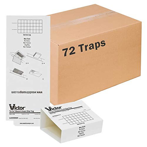 victor insect traps Victor M309 72 Pack Insect & Mouse Glue Board, White
