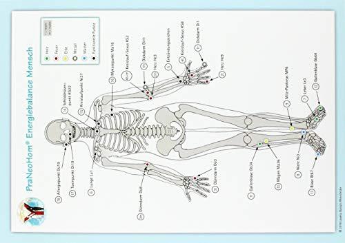 Akupunktur-Tafel Mensch: PraNeoHom® Energiebalance durch Heilen mit Zeichen