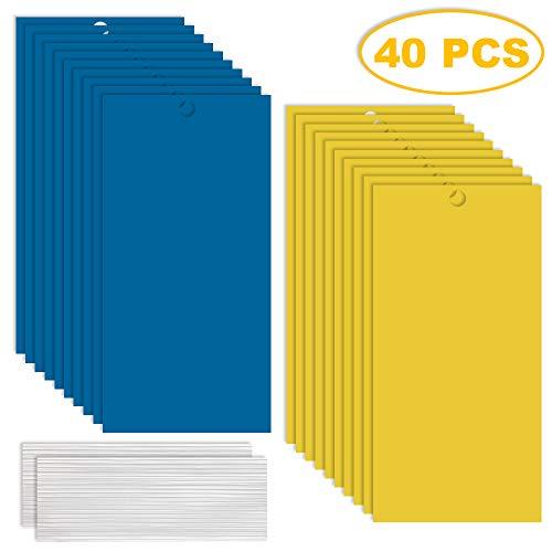 GiantGo 40 Stück Fliegenfänger Sticker - Gegen Schadinsekten - Insektenfänger - Fliegenfalle - Fliegenfalle mit Draht zum Aufhängen, Sichere und Umweltfreundliche, 40Stück_1Größe_2Farbe
