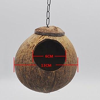 UEETEK Nid d'oiseaux Nid de coquille de noix de coco pour perruches Budgerigar et petit animal domestique