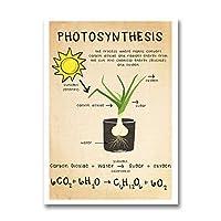 生物学光合成キャンバスプリント科学ポスター教育壁アート画像生物学ヴィンテージ絵画チャート研究室の装飾-50x70cmx1フレームなし