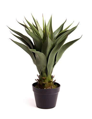 Beste Kunstmatige 70 cm 2ft Aloë Vera Plant Binnen Outdoor Tropische Kantoor Conservatorium Tuinboom (1) 80cm