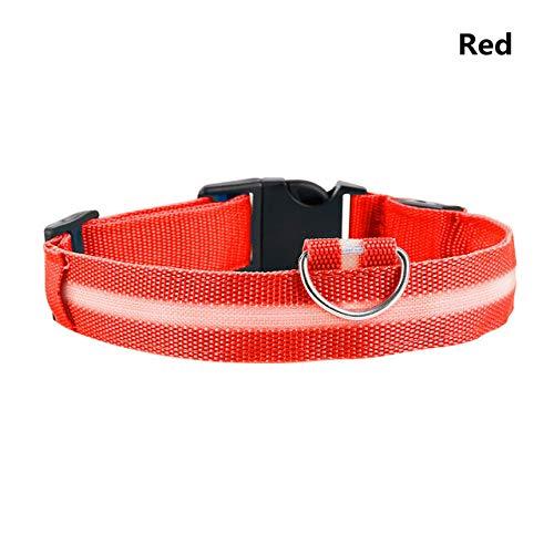 KDSFXG LED Collar de Perro para Mascotas Iluminado Collar de Correa de Perro Parpadeo de Seguridad Nocturna Brillo Ajustable en la Oscuridad Suministros para Mascotas, Nylon, Rojo, S